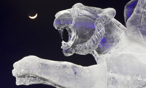 ice sculpture-R-600