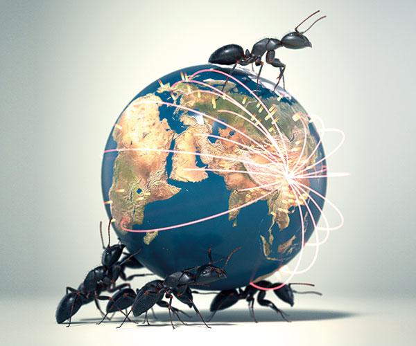 Ants-globe-illo-600