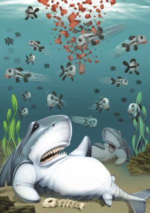 shark illustration-300