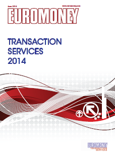 Transaction services guide 2014