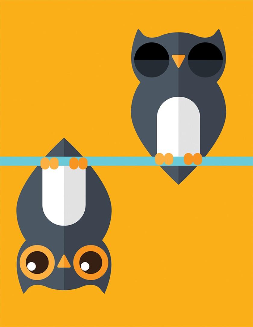 owls 780