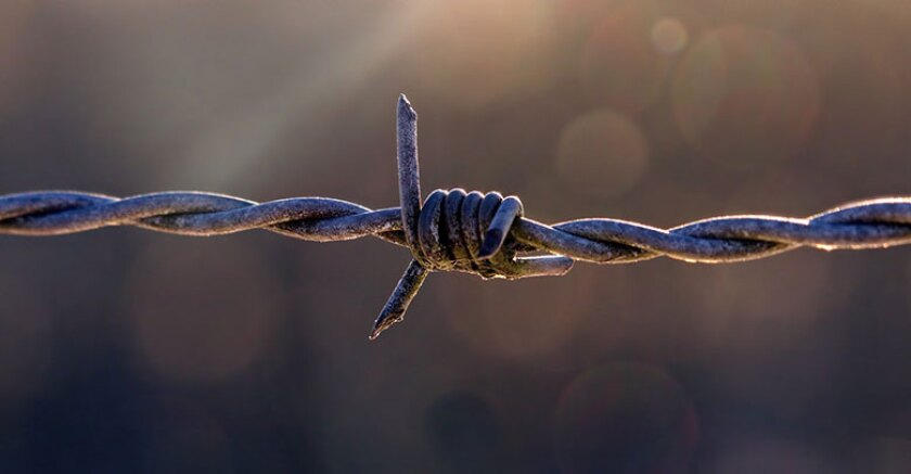 barbed-wire-fence-barrier-780.jpg