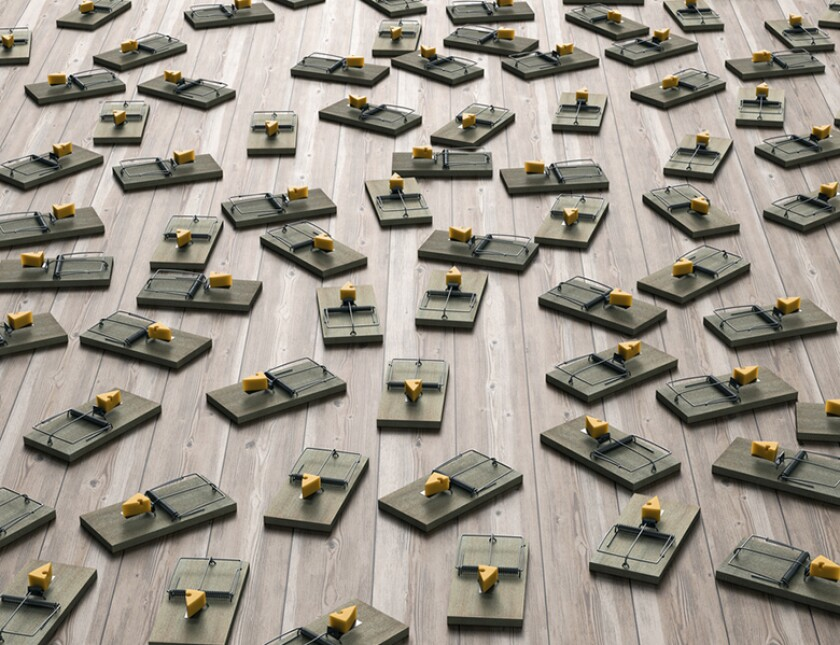 mouse-traps-cheese-minefield-istock-780.jpg