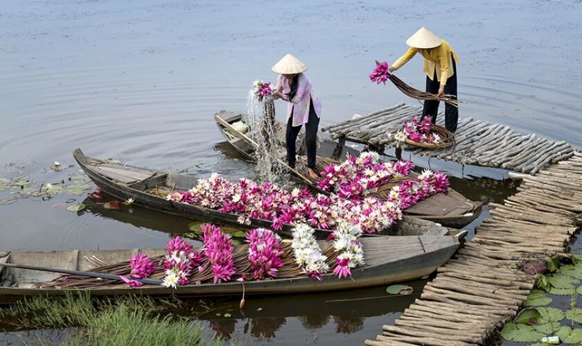 flowers-Vietnam-blossom-boat-780