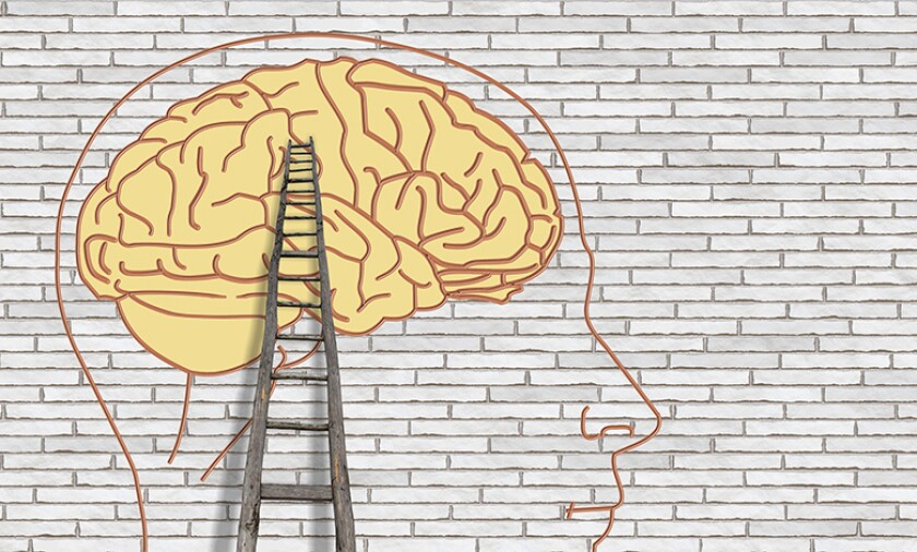 brain-think-ladder-wall-780