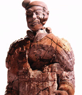 Terracotta-160x186