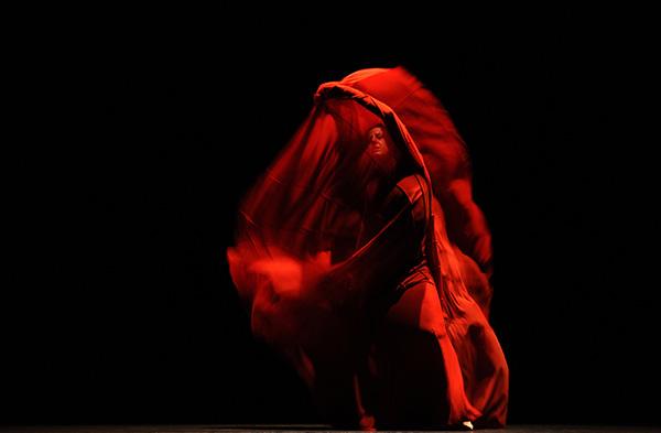 Flamenco-R-600