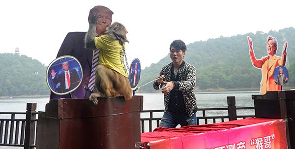 Trump China monkey-R-600